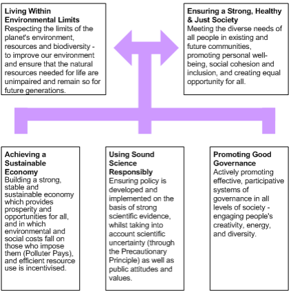 Diagram of the five interrelated guiding principles for sustainability