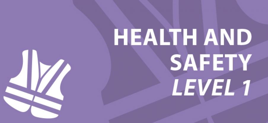 Health & Safety Level 1
