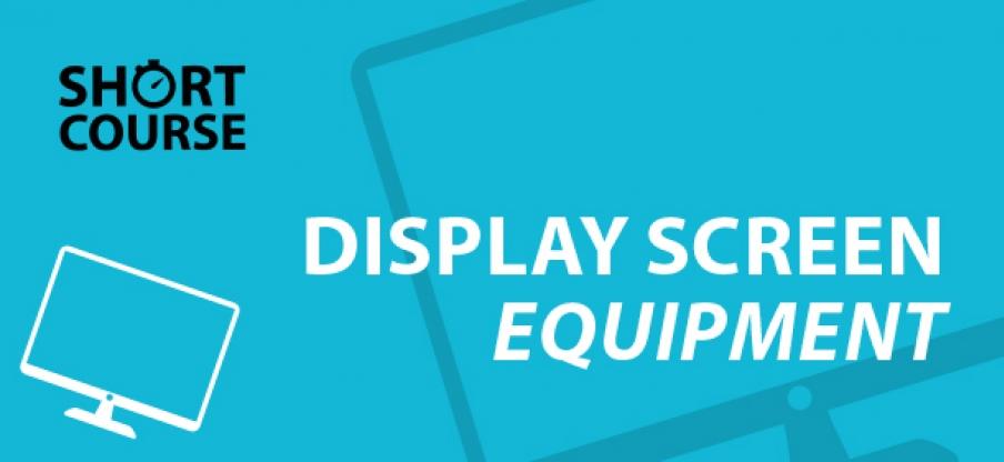 Short Course Display Screen Equipment